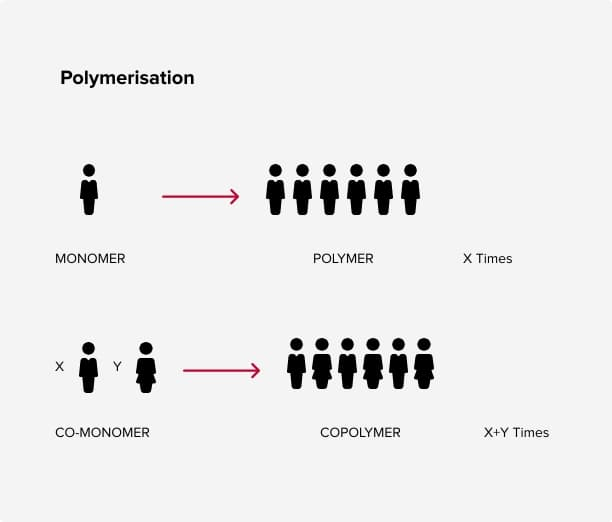 Polymer graph